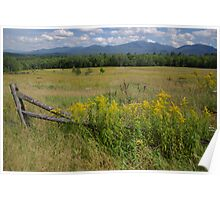 White Mountains & Meadows Poster