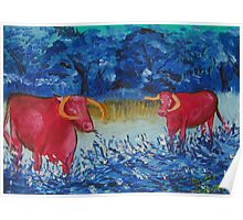 Pink Cows  Poster