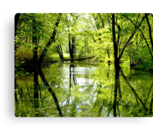 Calm After The Storms Canvas Print
