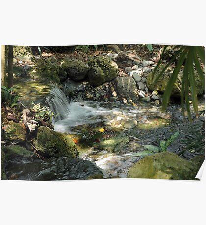 Tropical Stream in a Hammock Poster
