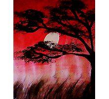 Moon shining thru the tree, watercolor Photographic Print