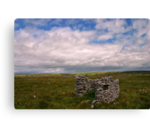 A Scene from Clare Canvas Print