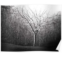 The Coat Hanging Tree Poster