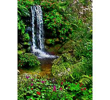 The Beauty Within : Rainbow Springs National Park Photographic Print