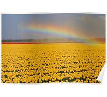 Rainbow & Tulips Poster