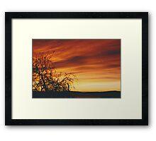 """The Almond Tree"" Framed Print"