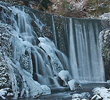Frozen McArthur Brae Falls by Alan Gray
