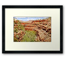 Typical Beauty Framed Print