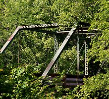 Steel Bridge by Phillip M. Burrow