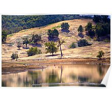 Lake Moyanup in late summer Poster