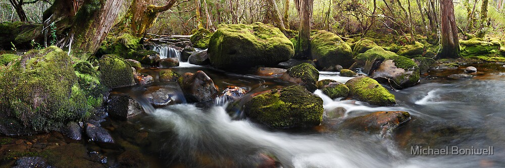 Pine Valley Stream, Lake St Clair National Park, Tasmania by Michael Boniwell
