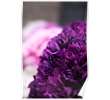 Shades of Purple ~ Wedding Flowers Poster