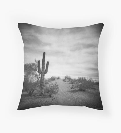 A Long Time After Throw Pillow