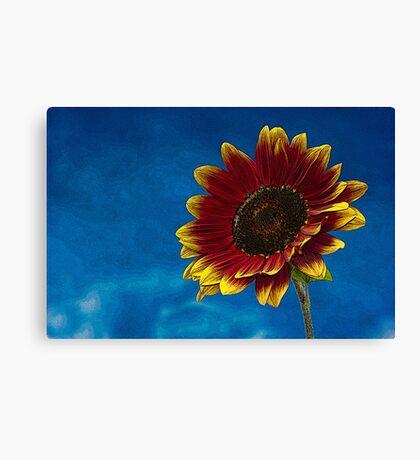 Sun Flower Sketch Art Texture Canvas Print