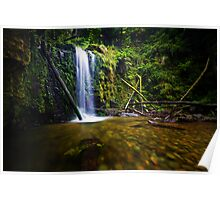 Marriners Falls, Great Otway National Park Poster