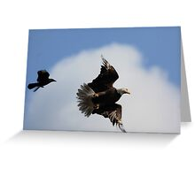 The chase in motion Greeting Card