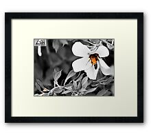 Unique Black & Yellow Framed Print