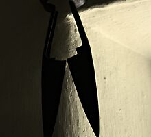 Shears by Julesrules