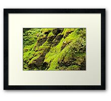 Greenery Framed Print