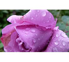 Raindrops on a Blue Moon Photographic Print