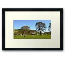 Train at Cromford Meadows, nr Matlock, Derbyshire UK Framed Print