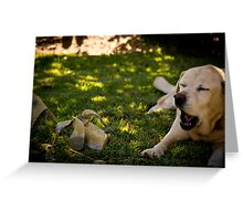 Chatting Labradors? Greeting Card