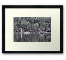 Dunn's Swamp Reflections - NSW Australia Framed Print