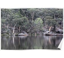 Dunn's Swamp Reflections - NSW Australia Poster