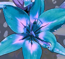 Photoshop Lily blue by marystarbuck