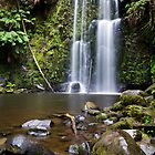 Beauchamp Falls, Otway National Park, Victoria, Australia by Shelley Warbrooke