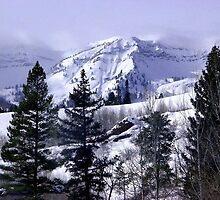Stewart Peak by Loree McComb