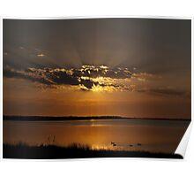 Ducks at Sunrise - Chittaway Bay Poster