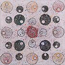 Circles of Confusion by Catherine Hadler