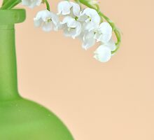 Lily of the Valley... take 2 :) by Denitsa Dabizheva