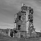 Tutbury Castle by Mike Topley