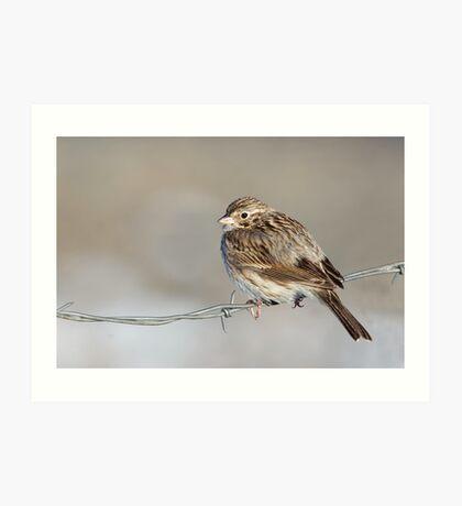 Bird on a Wire Art Print