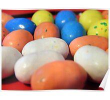 Macro Robin Eggs Poster