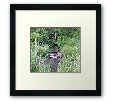Willow Patch Rain Gardens Reused Concrete Apron Framed Print