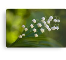 The subtle scent of spring Metal Print