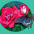 Blue Butterfly with Rose by JanDeA