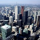 Toronto by Roman Romanenko