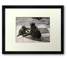 Brotherly fight Framed Print