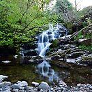 Clachan Of Campsie by Jim Wilson