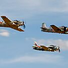 3 A1 Skyraiders by PhilEAF92