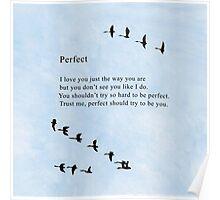 Bo Burnham's Perfect Poem Poster