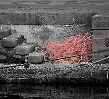 Red net by Andrea Rapisarda