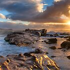 Golden Dawn by Mike Salway