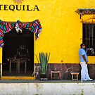 tequila by richard  webb
