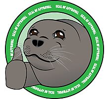 Seal Of Aproval Photographic Print