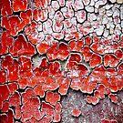 Rose Petal Peelings by Susana Weber